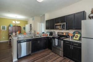 black cabinetry with stainless steel appliances